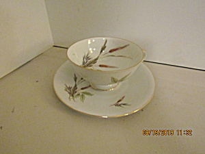 Vintage Victorian Bavaria Wheat Cup & Saucer Set