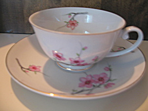Cherry Blossom Cup And Saucer Set