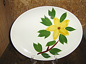 Golden Jasmine Usa Oval Serving Platter