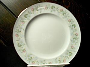 Haviland Johann - Antique China, Antique Dinnerware, Vintage China ...