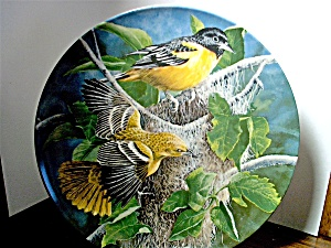 Knowles Birds Of Your Garden Plate The Baltimore Oriole