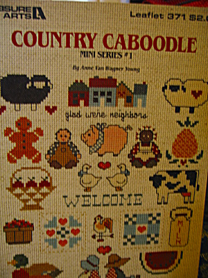 Leisure Arts Country Caboodle #1 Mini Series #371