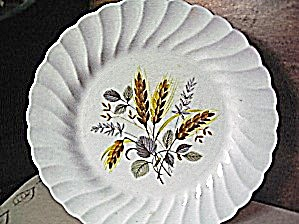 Myott Ironstone Wheat Dinner Plate