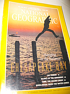 Vintage National Geographic Magazine June 1993