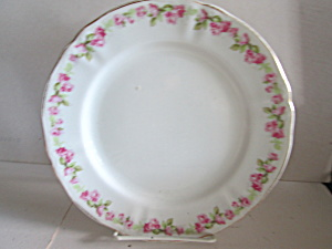 Vintage Syracuse China Salad Plates O.p.co.