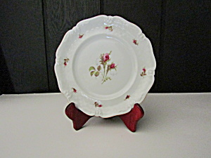 Vintage Dinnerware Royal Coburg, 010775 Dinner Plate