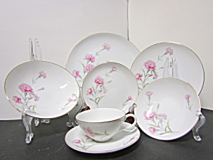 Royal Court Carnation 28 Piece Dinnerwear Set