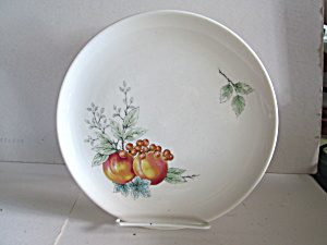 Vintage Carefree Syrecuse China Wayside Luncheon Plate