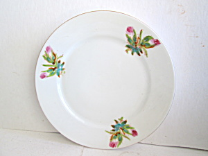 Vintage Dinnerware Cactus Flower Salad Dish (Image1)