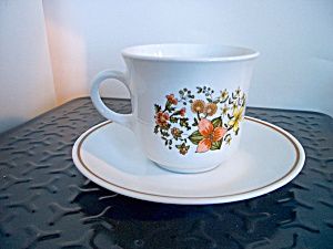 Vintage Corelle Indian Summer Cup And Saucer