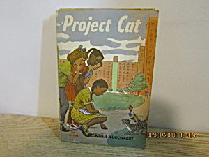 Vintage Young Person's Book Project Cat