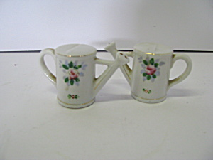Vintage Floral Sprinkling Can Salt & Pepper Shaker Set