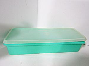 Vintage Tupperware  Clear/Medium Green Celery Keeper (Image1)