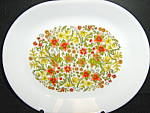 Click here to enlarge image and see more about item is10o: Corelle Indian Summer Plater