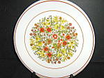 Click here to enlarge image and see more about item is3o: Indian Summer Corelle Luncheon Plate