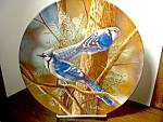 Click here to enlarge image and see more about item kbirdp1k: Knowles Plate  The Blue Jay