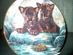 Click here to enlarge image and see more about item wildpff3p: Princeton Gallery Plate Curious Duo