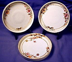Hand Painted Nippon Coaster Set