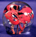 Click here to enlarge image and see more about item GLS017: Sprouting Red Flowers Glass Paperweight