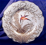 Click here to enlarge image and see more about item RYLWR033: Chamberlains Worcester hp Bird Plate