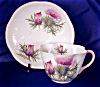 Click to view larger image of Shelley Dainty Thistle cup & saucer (Image2)