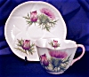 Click to view larger image of Shelley Dainty Thistle cup & saucer (Image5)