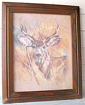 Original Pastel Art Drawing Of Buck In Forest By K.maroon