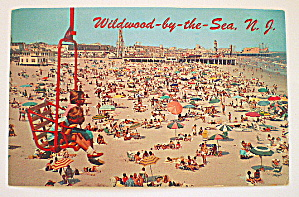 Vintage Photo Postcard-Wildwood-By-The-Sea, NJ (Image1)