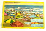 Comic Vintage Postcard-Sand & Surf Enjoyment