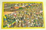 Click here to enlarge image and see more about item PC-106: Comic Vintage Postcard-$5 Reward
