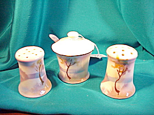 RARE RS PRUSSIA THREE PIECE H.P.CONDIMENT SET (Image1)