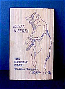 Canadian Grizzly Bear Wooden Post Card