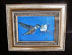 Broad-Tailed Hummingbird Framed Art (Image1)