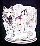 Wolves - Silent Watch - Guardians of Forest (Image1)