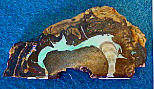 Opal Slab - Buffalo Form
