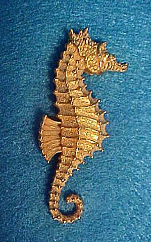 Ben-Amun Gold Plated Seahorse Pin (Image1)