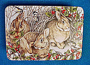 Rabbits Tin - Woodland Celebration (Image1)