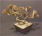Click here to enlarge image and see more about item 14A: Bonsai Sculpture
