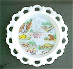 Click here to enlarge image and see more about item A452: Yellowstone Park Scenic  Glass Plate