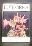 Click here to enlarge image and see more about item AA110: The Euphorbia Journal - Volume 7