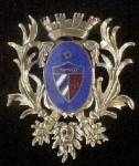 Intricate Royal Style Banner Pin