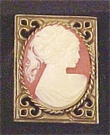 Click here to enlarge image and see more about item E114: Exquisite Gold Tone Cameo Pin