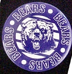 Click here to enlarge image and see more about item P155: Bears Pinback Pin