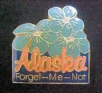 Click here to enlarge image and see more about item P172: Alaska - Forget-Me-Not/Souvenir Pin