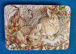 Click to view larger image of Rabbits Tin - Woodland Celebration (Image1)