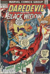 Click here to enlarge image and see more about item CB003: Daredevil and the Black Widow Issue 102, August, 1973
