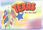 Click here to enlarge image and see more about item AAA471: Souvenir Post Card Series ~ Texas The Lone Star State ~