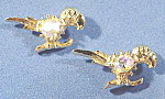 Click here to enlarge image and see more about item B569: Parrot Scatter Pin Set - Aurora Borealis - 1950s