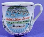Click here to enlarge image and see more about item B820: Souvenir Dragonware Cup - Florida Silver Springs