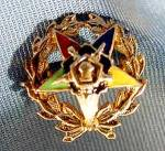 10K Yellow Gold Enameled Order of Eastern Star Pin